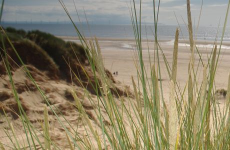 National Trust Formby
